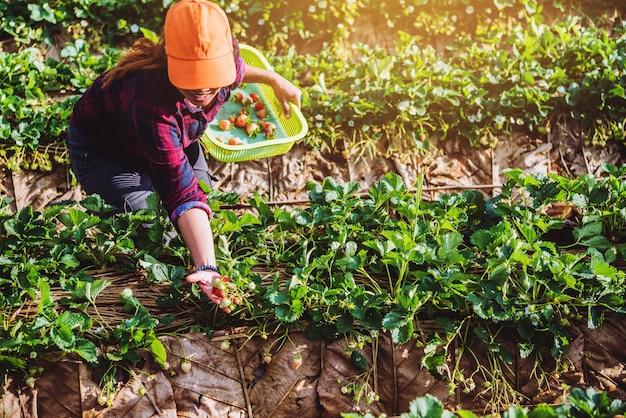 女性アジア旅行自然 Premium写真