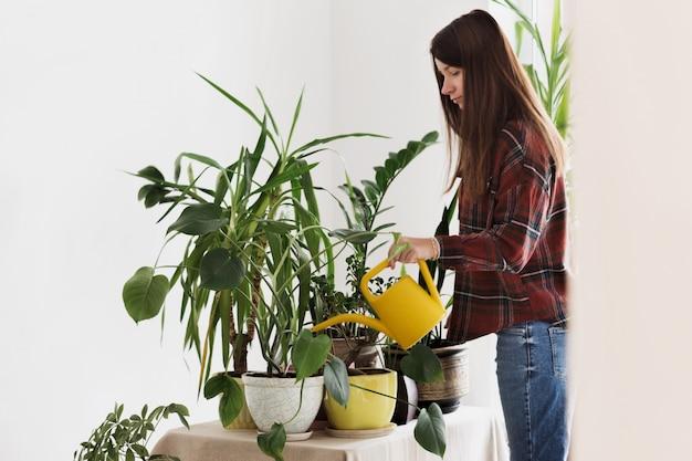 自宅で女性の植物に水をまく