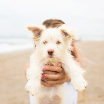 Woman at the beach holding dog