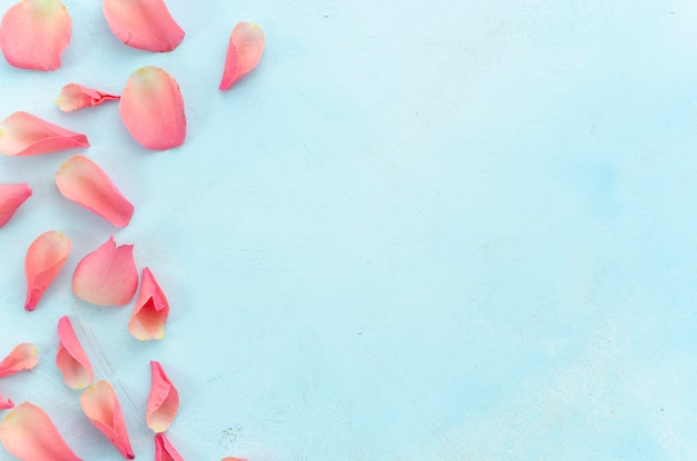 Woman beauty salon and spa procedures with pink rose petals top view at light blue background