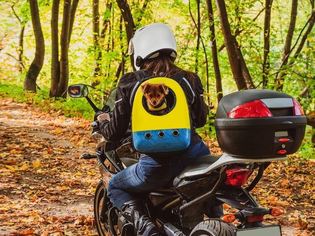 Байкер женщина на мотоцикле едет по лесной дороге с собакой в рюкзаке на спине.