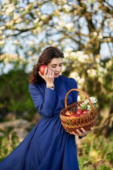 Woman in a blue dress is standing in a blooming garden. the woman has a basket of apples in her hands. the garden is covered with white flowers.