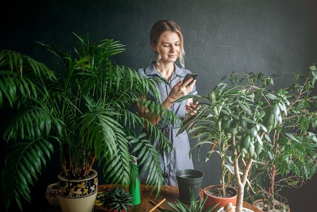 家の植物の世話をする女性
