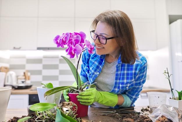 植物ファレノプシスランの世話をし、根を切り、土壌を変える女性。