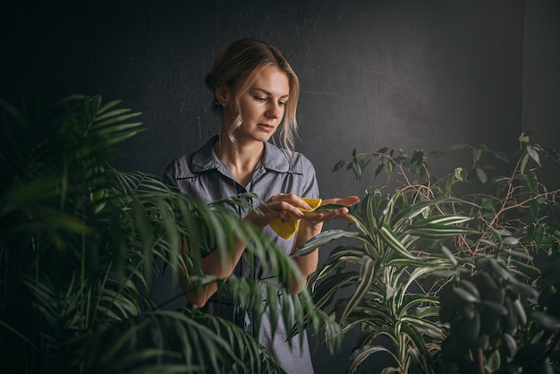 woman caring for home plants
