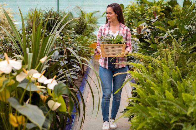 Woman carrying basket in greenhouse