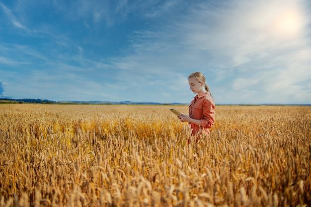 小麦の品質をチェックする分野でタブレットコンピューターを持つ女性白人技術者農学者