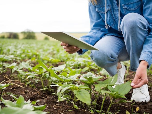 Donna che controlla le sue piante con lo spazio della copia