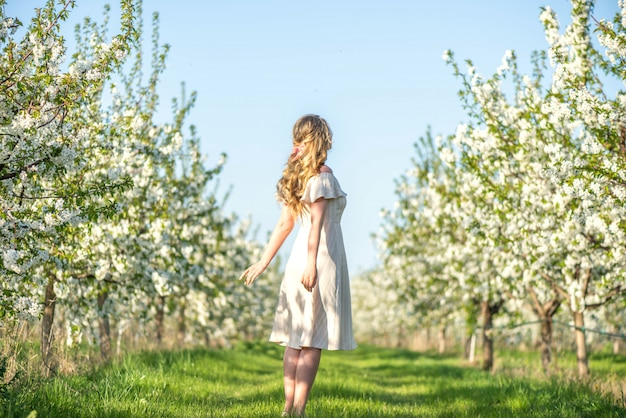 Woman in cherry blooming orchard in spring