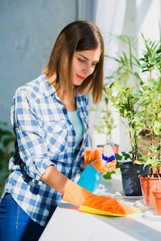 Woman cleaning window sill surface with napkin near the potted plant