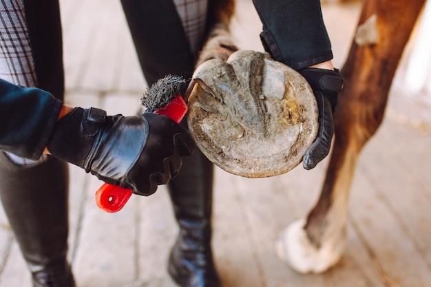Женщина чистит лошадиные копыта специальной щеткой перед поездкой