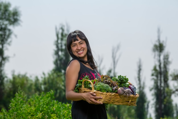 Woman collecting vegetables
