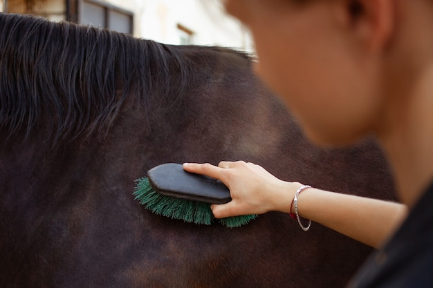 A woman combs and cleans a horse of dirt with a big brush