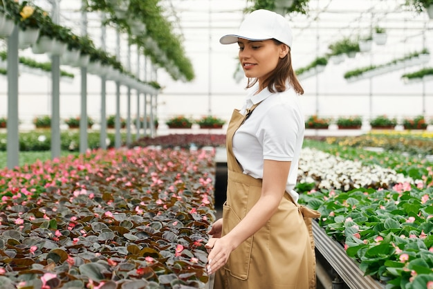 Woman controlling quality of flowers at greenhouse