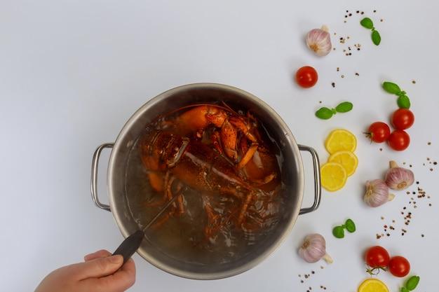Женщина готовит омаров в кастрюлю с cpice и травы.