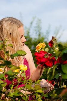 Woman cutting the roses in garden