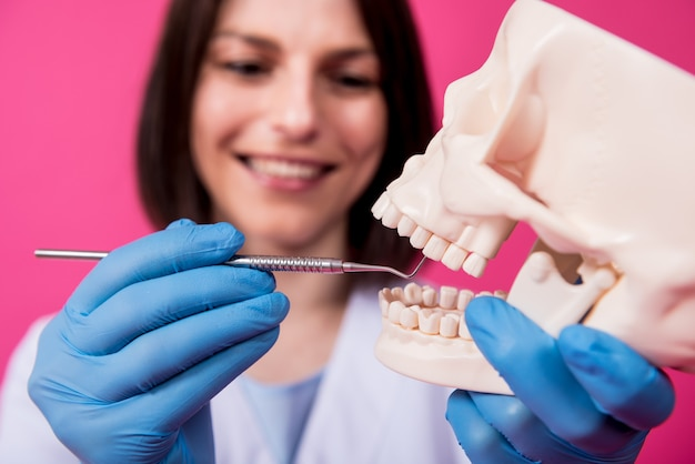 Woman dentist examines the oral cavity of the artificial skull with sterile dental instruments