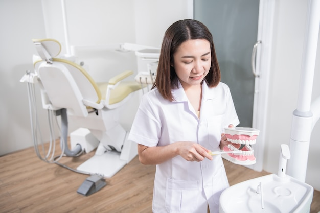 Woman dentist practicing work on tooth model
