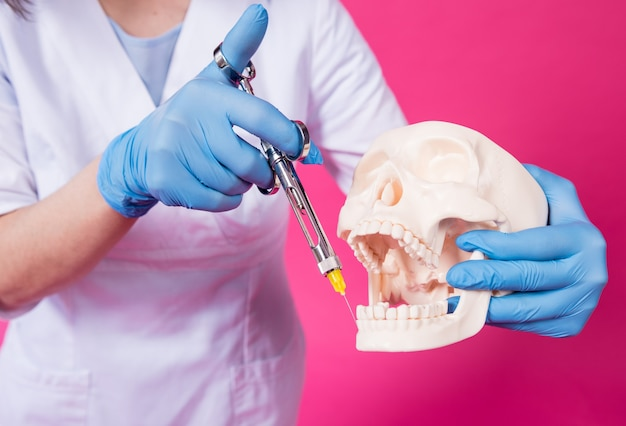 Woman dentist with a carpool syringe injects anesthetic into the gum of the artificial skull