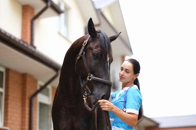 農場でサラブレッドの馬をなでる女医獣医