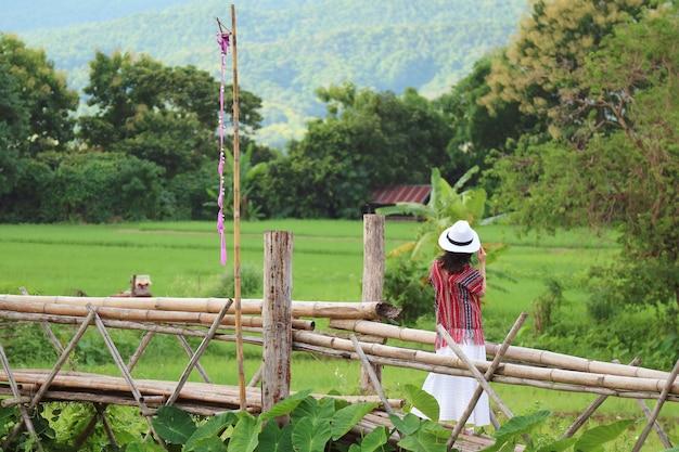 여자는 대나무 다리에서 활기찬 녹색 논의 아름다운 전망을 즐길 수