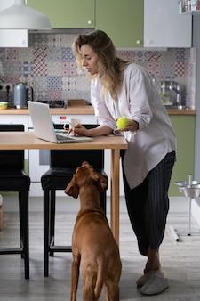 穏やかな犬が所有者の注意を待って遊ぶので、キッチンのラップトップで女性起業家タイプの電子メール