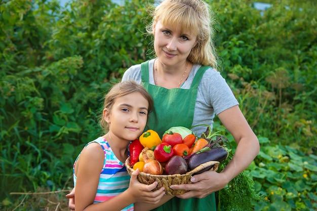 野菜の収穫と庭の女性農夫と子供。セレクティブフォーカス。子供。
