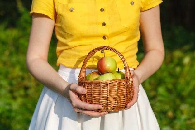 Женщина-фермер держит корзину с яблоками в саду