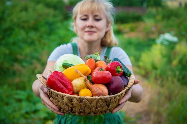 野菜の収穫がある野菜畑の女性農家。セレクティブフォーカス。食べ物。