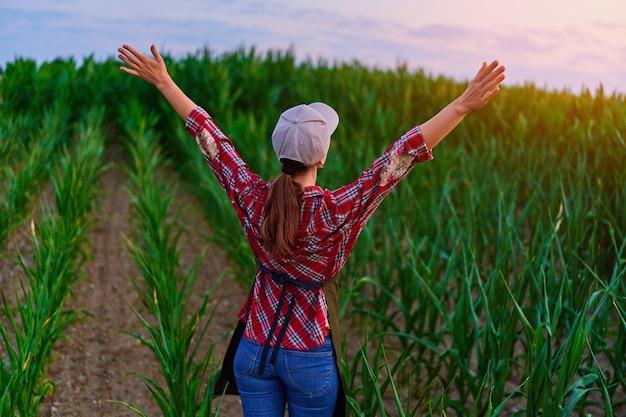 일몰에 녹색 옥수수 밭에 두 팔을 벌리고 서 있는 여성 농부