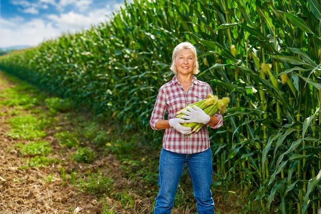 옥수수의 작물을 가진 여자 농부입니다.