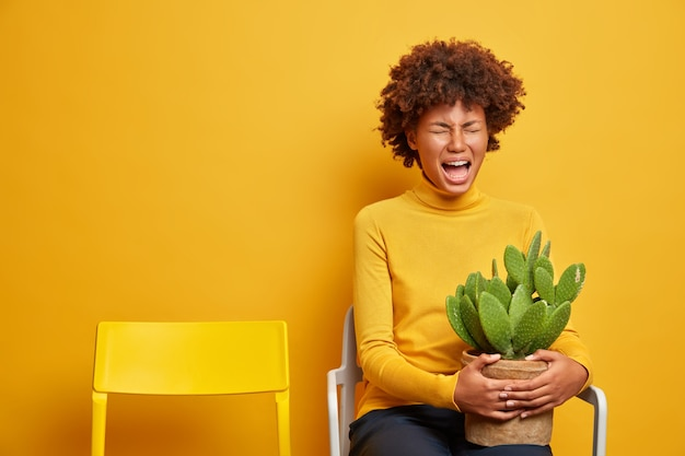 Woman feels desperate holds pot of cactus poses on chair on yellow
