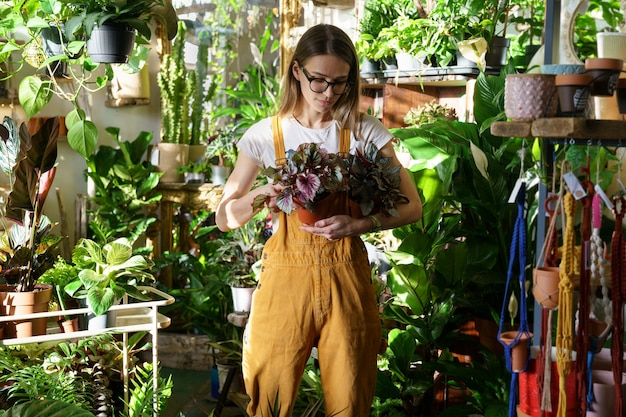 Woman florist work in greenhouse young gardener hold potted houseplant for sale in flower store