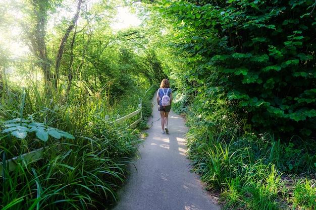 日没時に森の小道を歩いている後ろからの女性。