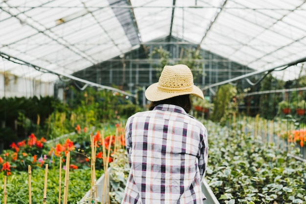 Woman from behind inside greenhouse