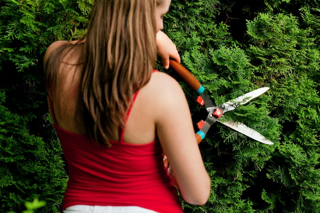 Woman in garden trimming hedge