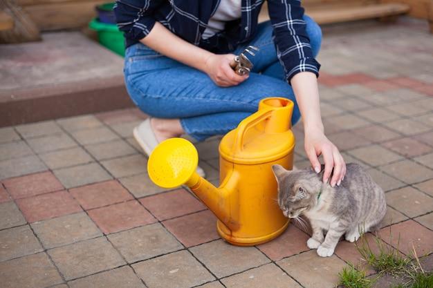 裏庭の庭の女性の庭師と猫の水やり植物