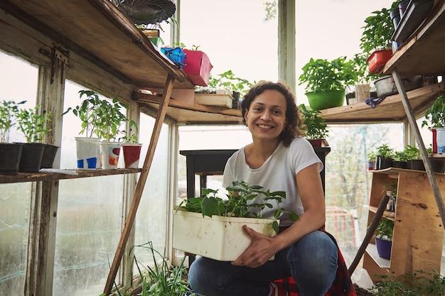 여성 정원사는 카메라 앞에서 포즈를 취하고 고향 온실에 쪼그리고 앉고 그녀의 손에 오이 묘목 냄비를 들고 귀여운 미소