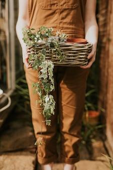 植物のバスケットを保持している女性の庭師