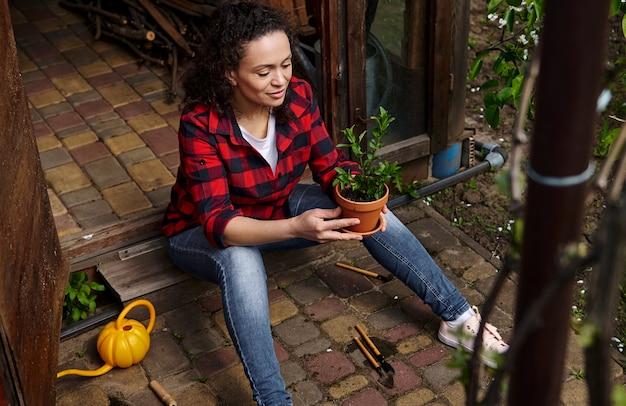 女性の庭師は、ミントの葉を植えた土鍋を持って、田舎の庭の木製の望楼でガーデニングを楽しんでいます