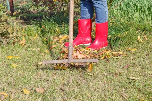 赤いゴム長靴を履いた女性の庭師は、秋の古い熊手で庭を掃除します。