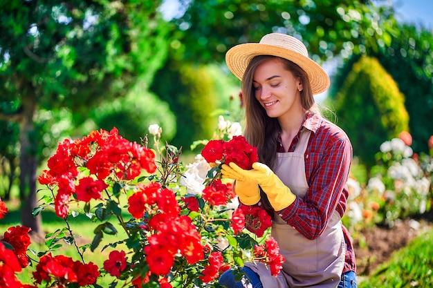 Женщина садовник пахнет розой