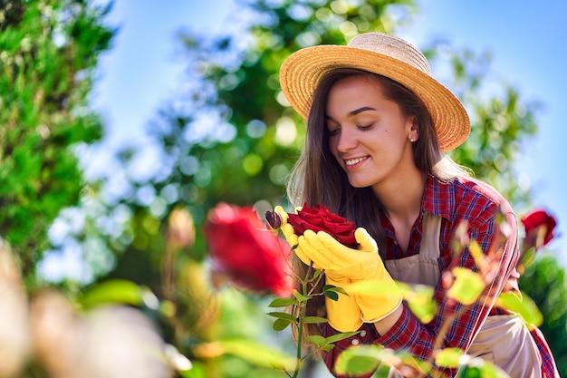 Женщина садовник пахнет и наслаждается ароматом цветка розы в домашнем саду в солнечный день