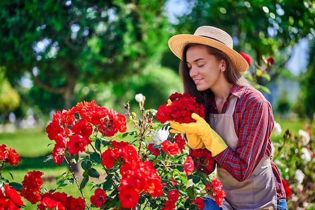Женщина садовник пахнет и наслаждается ароматом розы цветы в саду