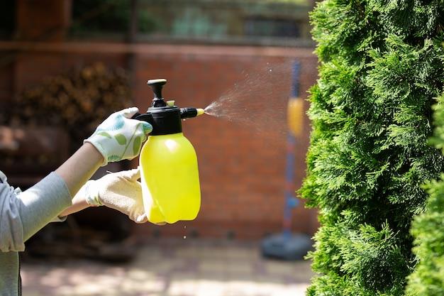 Женщина-садовник опрыскивает растения в домашнем саду.