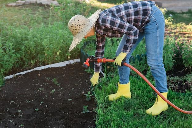 日当たりの良い暖かい春の日の新しい季節の植物の世話とホースで彼女の庭のベッドに水をまく女性の庭師