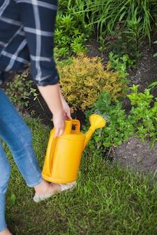 Женщина-садовник поливает растения в саду на заднем дворе