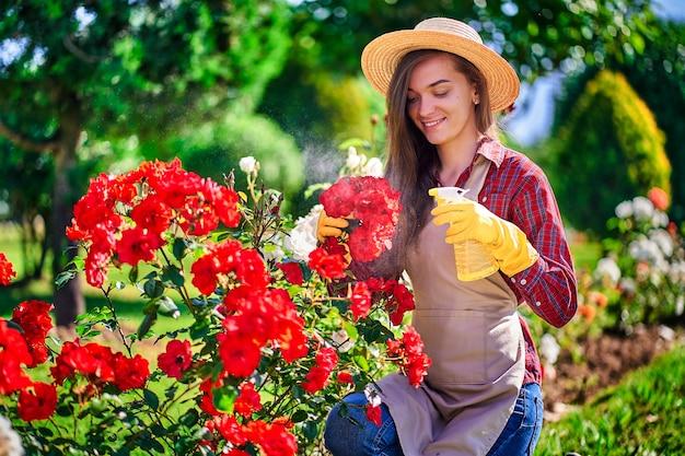 Женщина садовник поливает розы цветы с пульверизатора