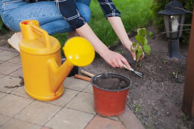 Женщина-садовник, работающая в саду на заднем дворе
