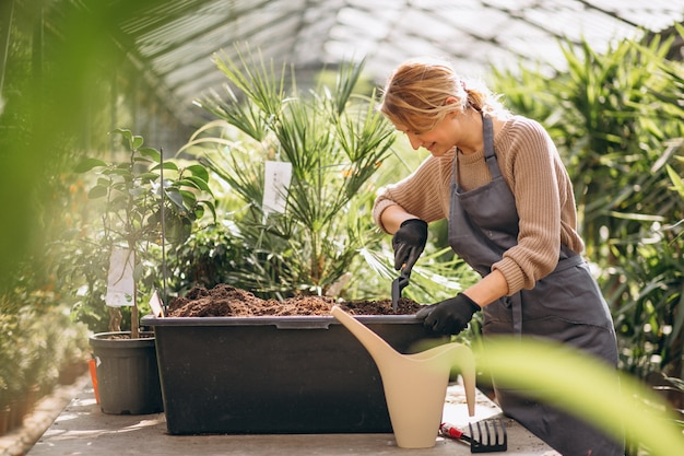 Woman gardner in a greenhouse